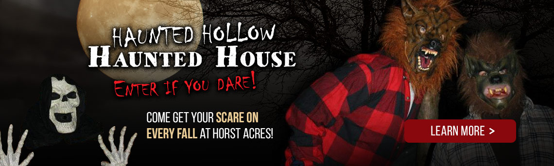 Haunted Hollow Haunted House | Staples, Minnesota